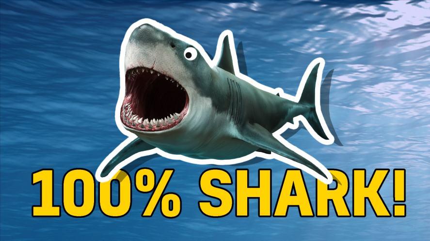 100% shark