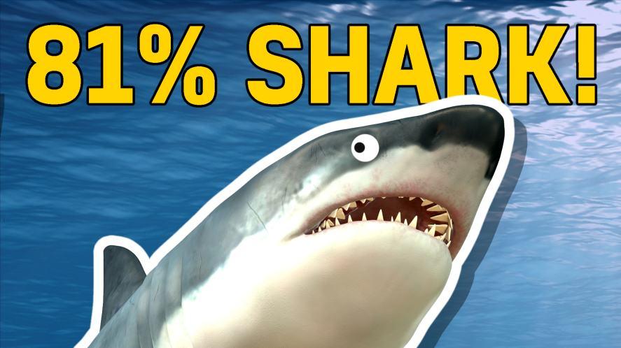81% shark