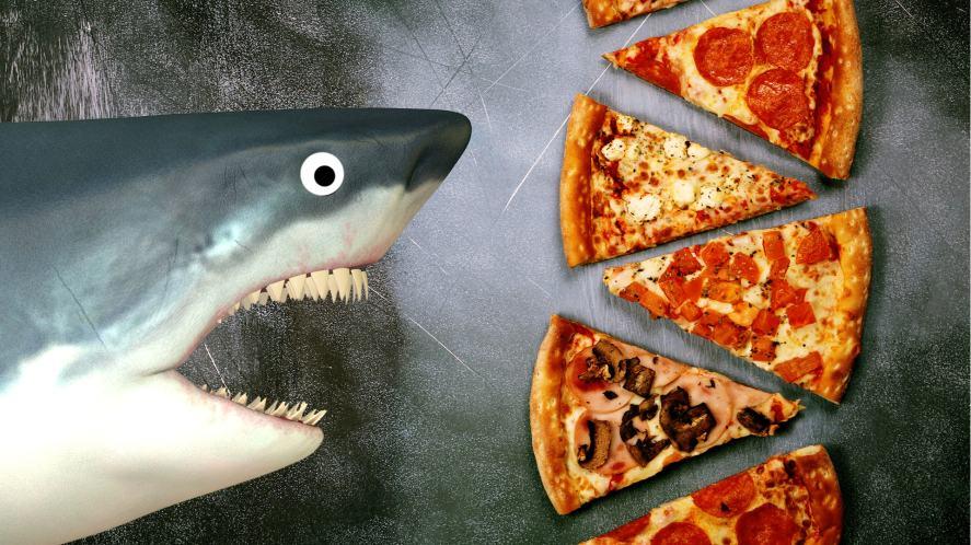 A shark approaches a pizza buffet