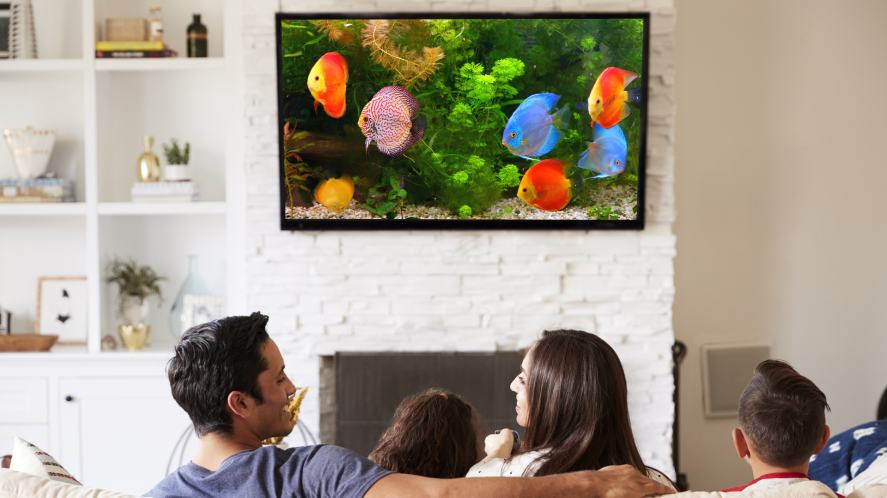 A family watching a TV show about fish