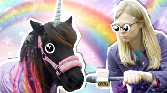 Roving Reporter Unicorn Makeover