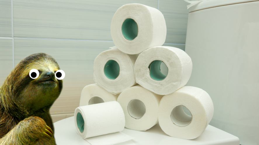 A sloth next to a big pile of toilet rolls