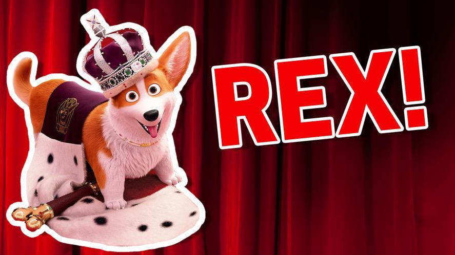 Rex The Queen's Corgi