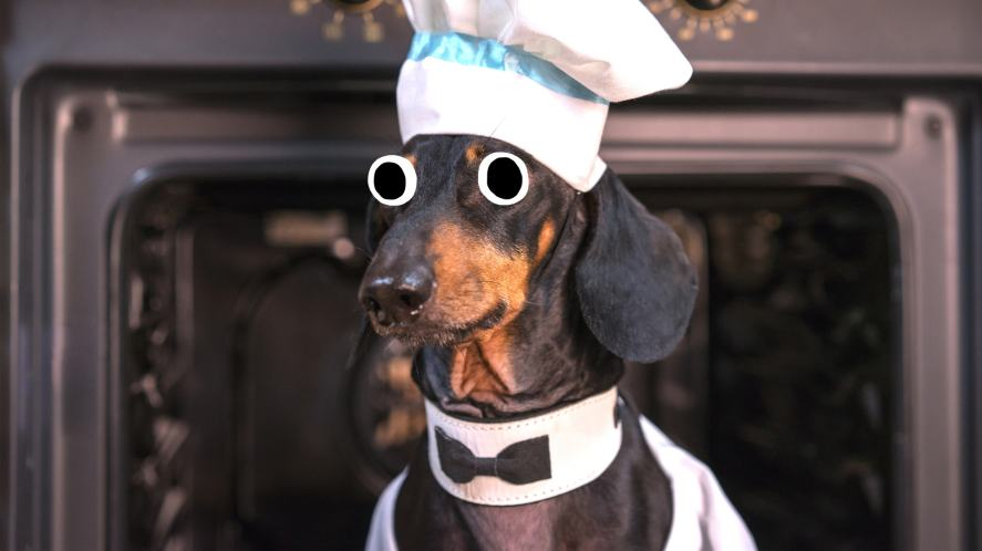 A dog dressed as a successful chef