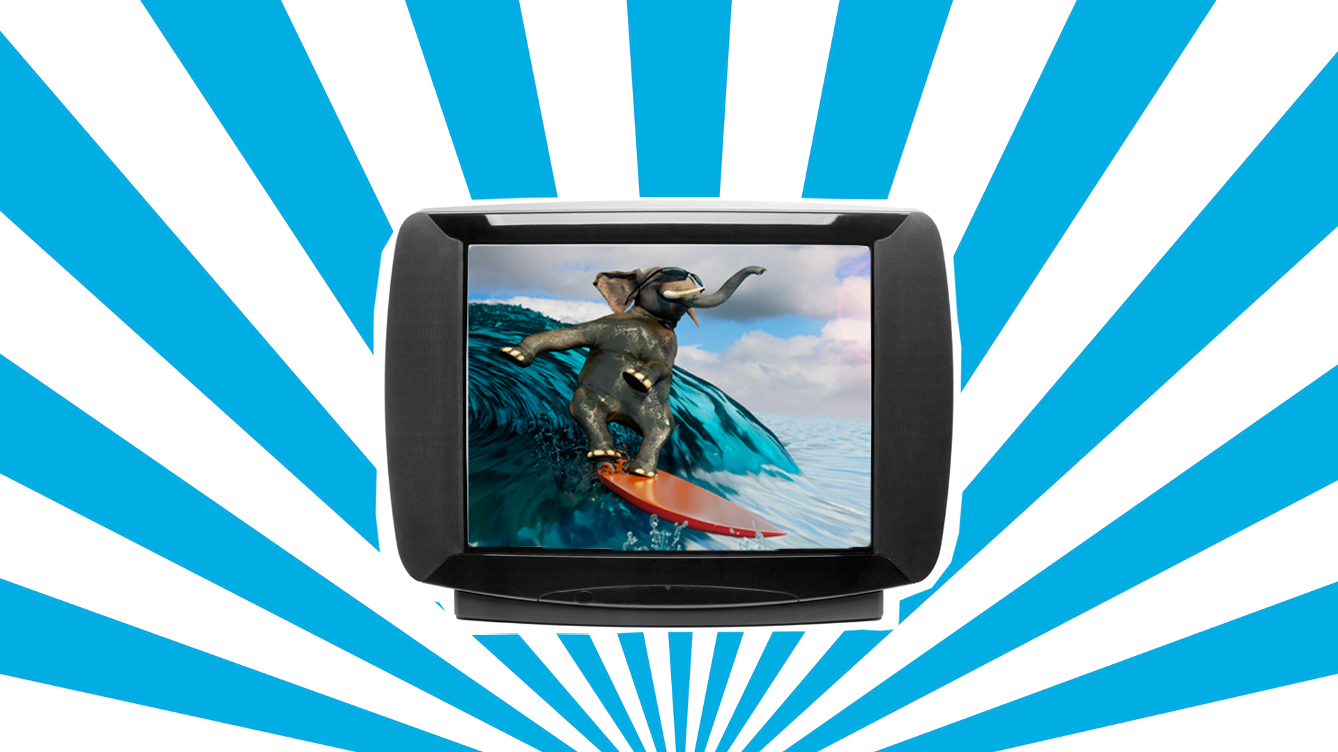 TV screen showing an elephant surfing