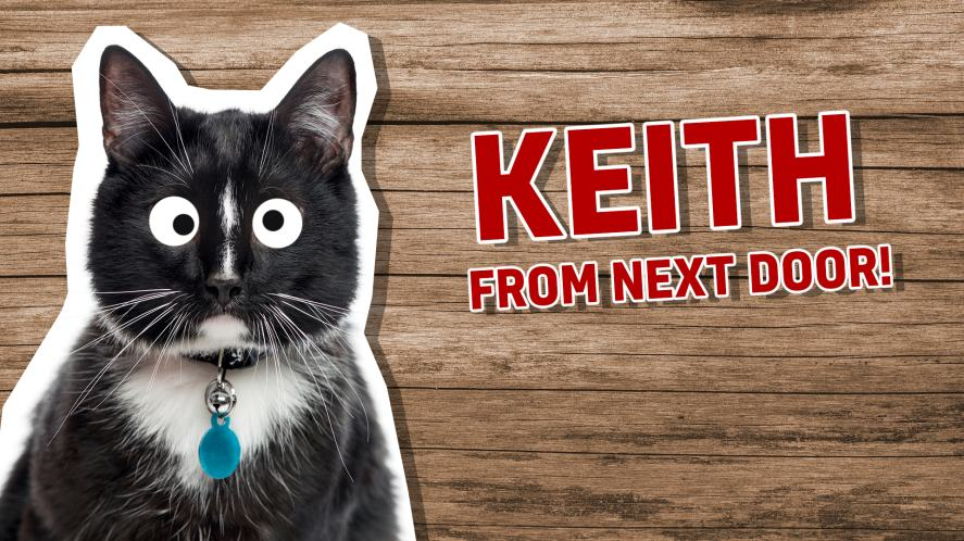 A black and white cat called Keith