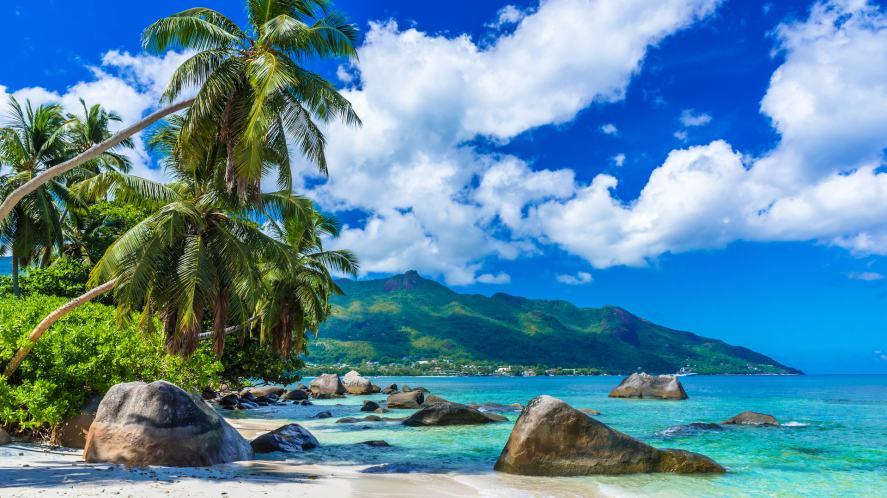 A beautiful beach in the sunshine