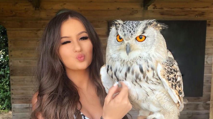 Holly and an owl
