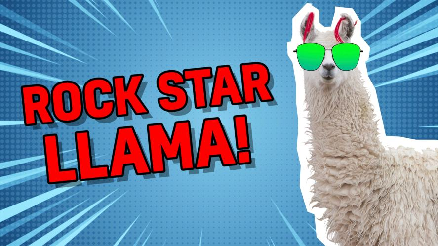 Rock star llama