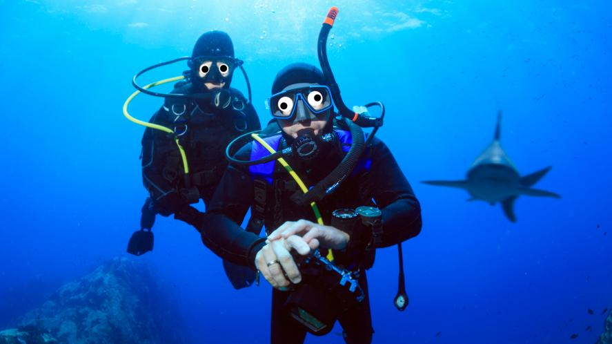 Two scuba divers with a shark in the background