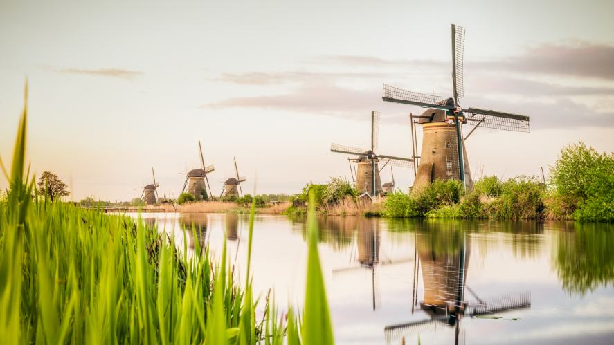 Windmills along a gassy bank