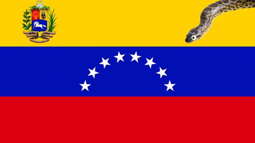 A snake slithering on a Venezuelan flag