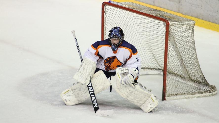 An ice hockey goalie