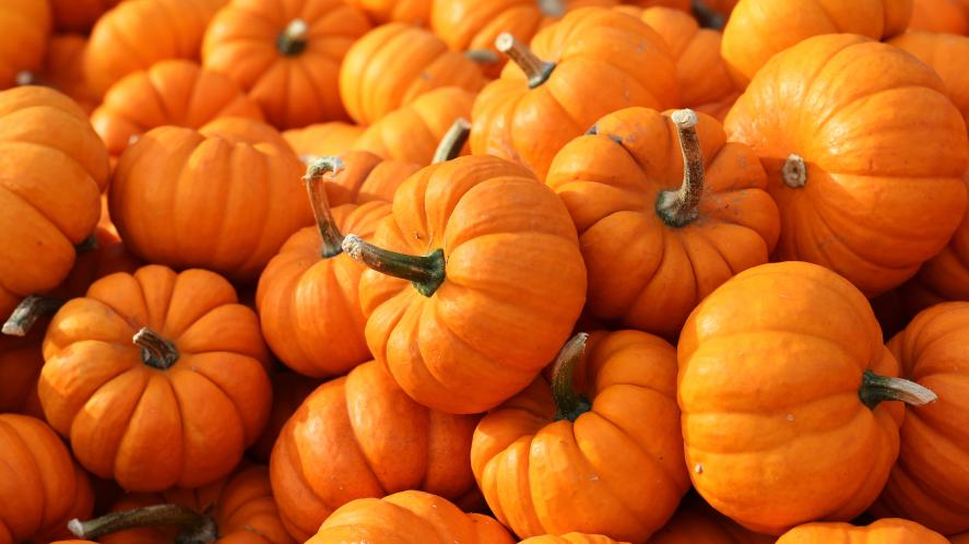 A small pile of pumpkins