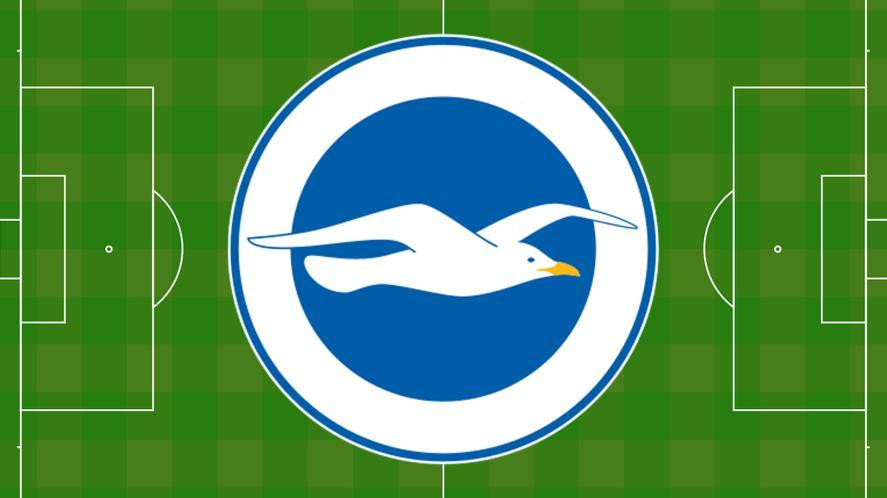 Football badge featuring a seagull