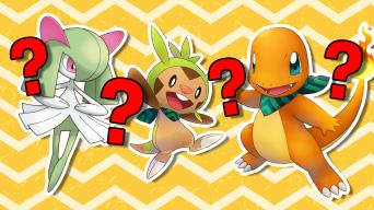 Pokemon Mystery Dungeon Test