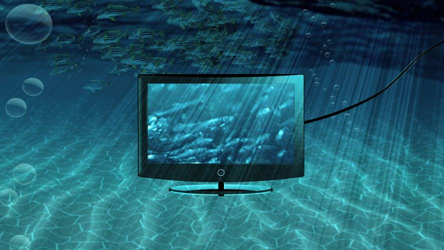 Flatscreen TV in the sea. Not recommended!