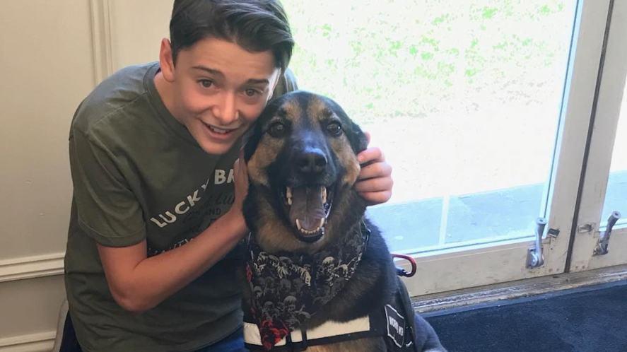 Noah Schnapp and a dog
