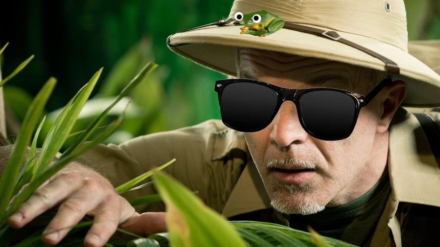 An explorer searching for a flying frog