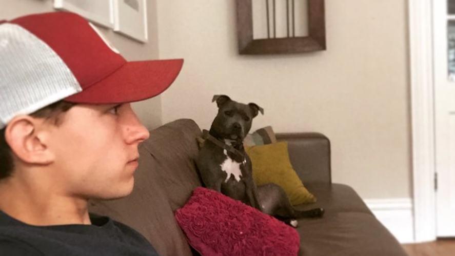 Tom and his pet dog, Tess