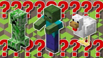 Minecraft quiz