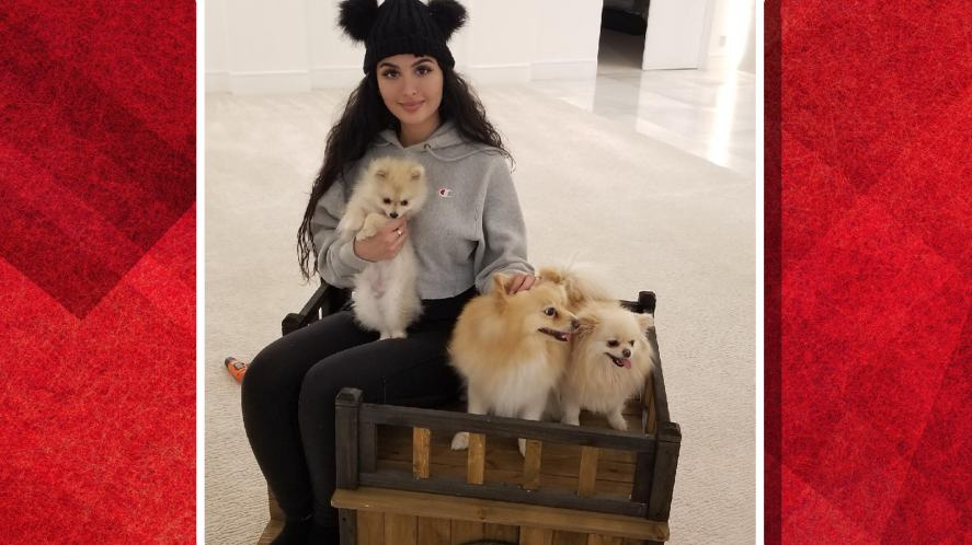 SSSniperwolf and her three dogs