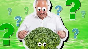 Should I go Vegan Quiz