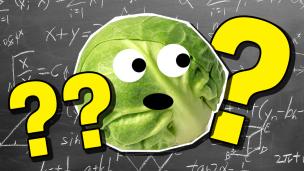 Year 6 Maths Quiz