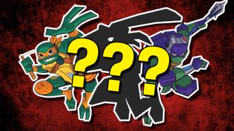 Which Teenage Mutant Ninja Turtles Character Are You?