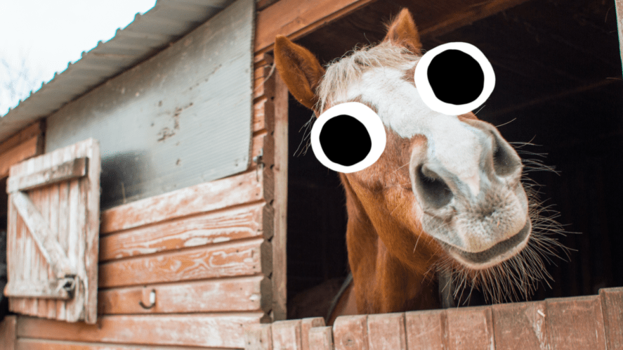A horse sticks its head out of a stable door