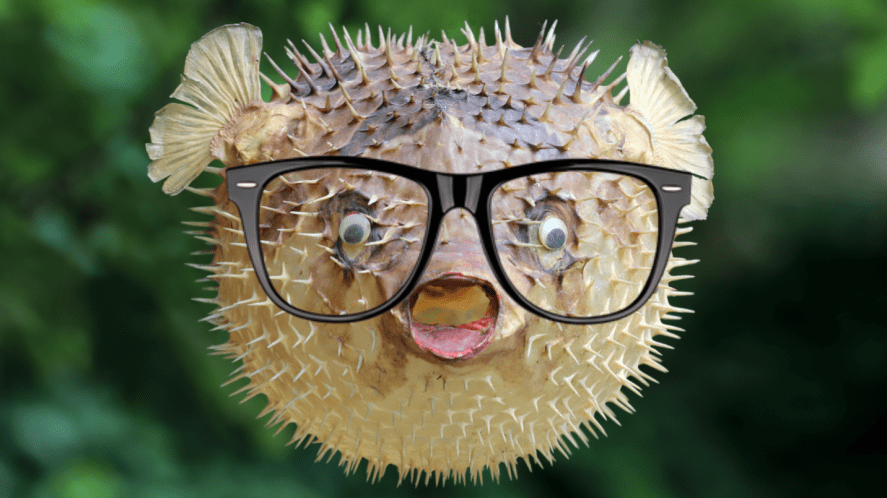 A surprised fish wearing glasses