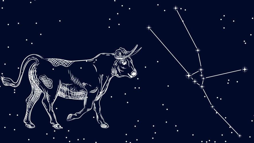 Taurus and the constellation of Taurus