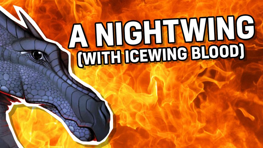 A Nightwing – With Icewing Blood!