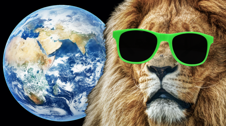 A lion and the Earth