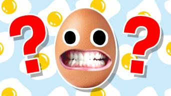 The Ultimate Egg Quiz