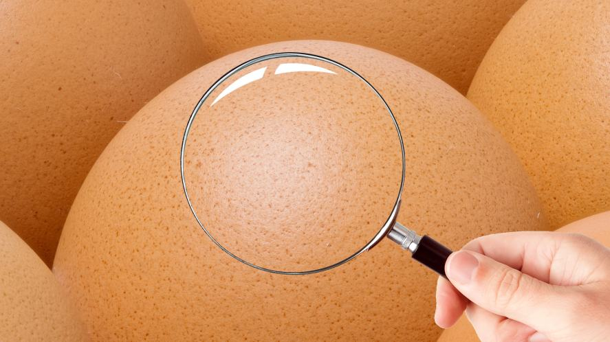 A magnifying glass held over a big egg