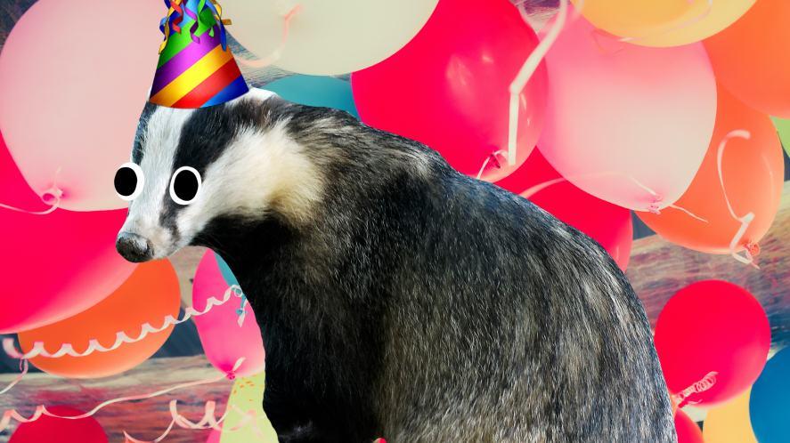 A badger at a Hufflepuff party