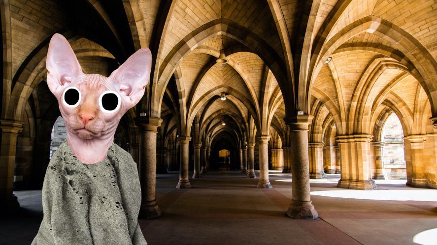 Dobby in Hogwarts