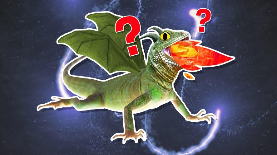 A firebreathing dragon