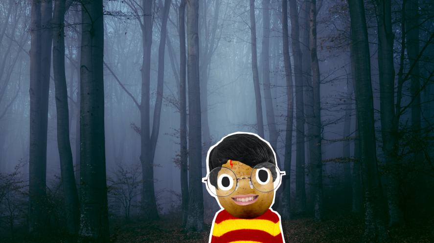 Harry in a spooky forest
