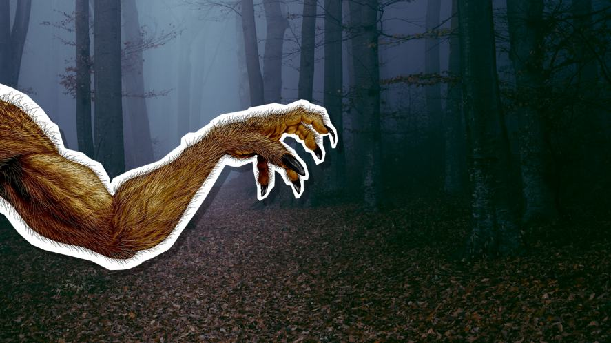 A werewolf arm in a spooky forest
