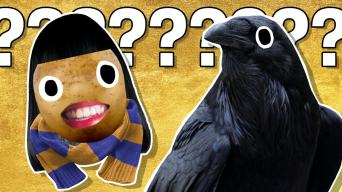 The Ultimate Ravenclaw Quiz