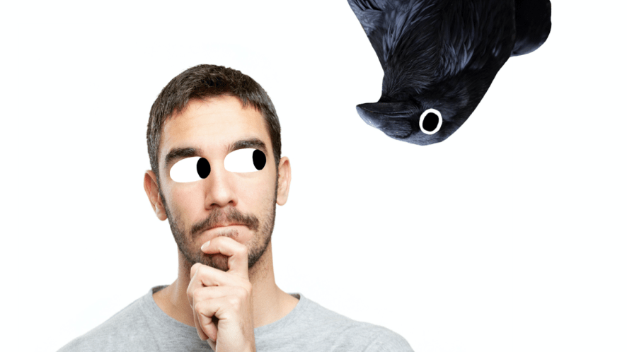 A man thinking while a raven stares