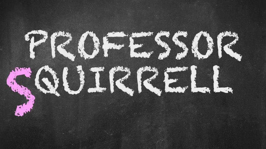 Professor Squirrel written on a chalkboard