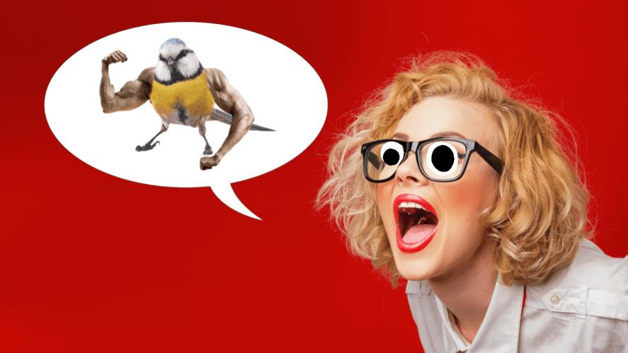 A woman telling a joke about a bird