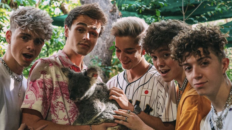 Why Don't We pose with a koala
