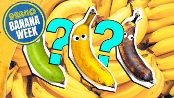 What Type Of Banana Are You?