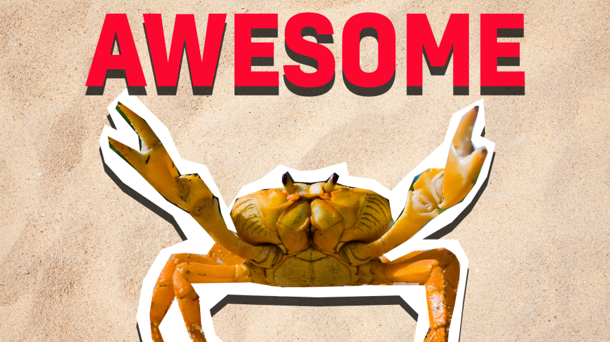 Crab and the word 'awesome'