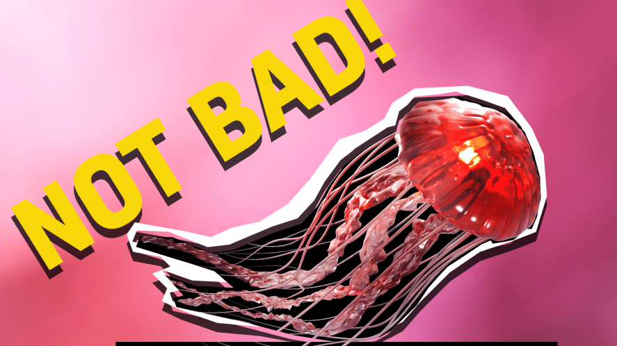 Jellyfish and the words 'not bad'