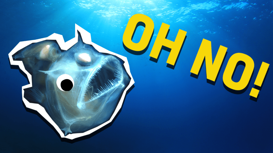 Angler fish and the words 'oh no'